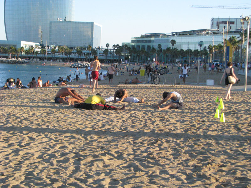 cvičící capoeiristi