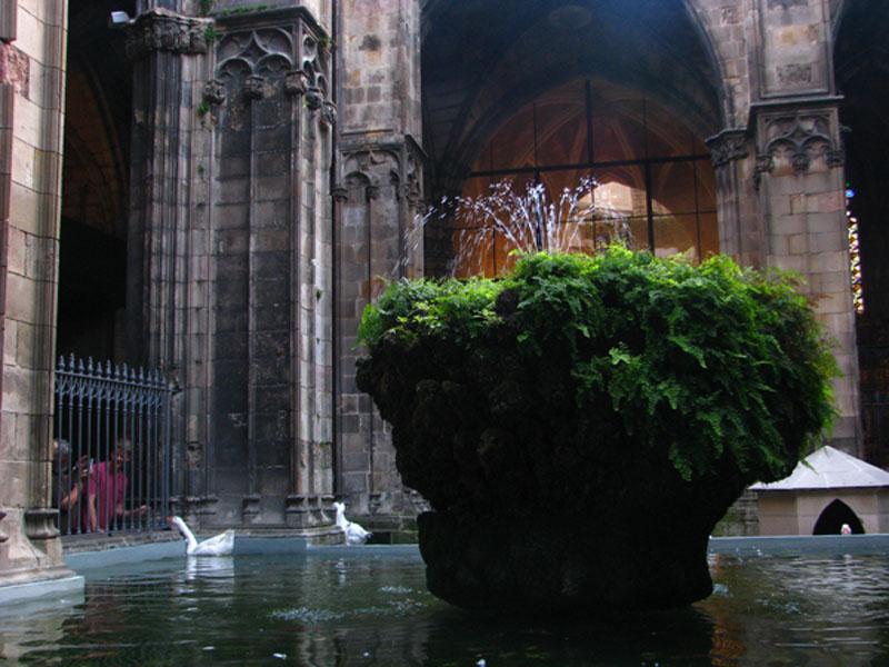 nádherná vnitřní zahrada katedrály