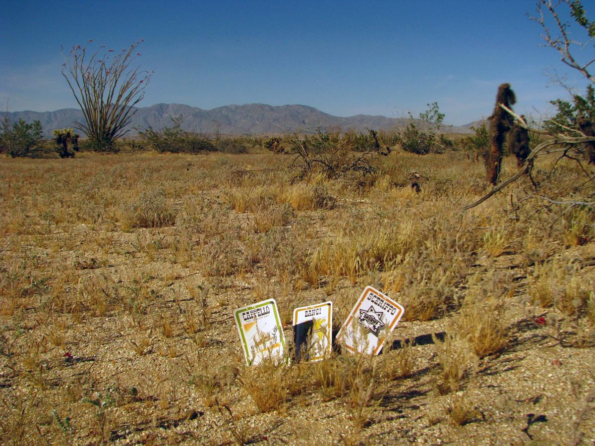 Bang! v poušti