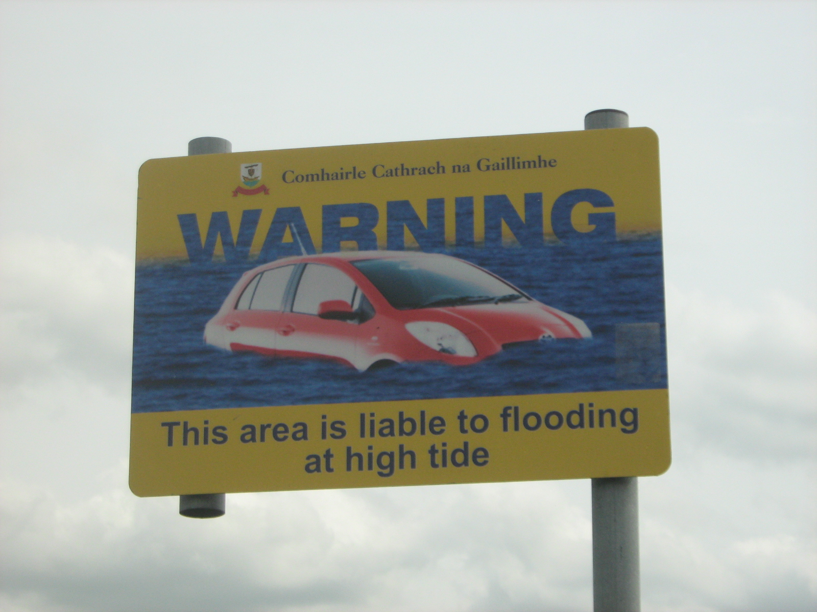 car swiming