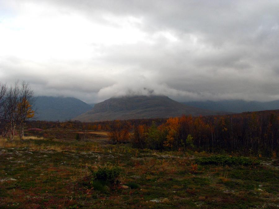 zamlžené hory