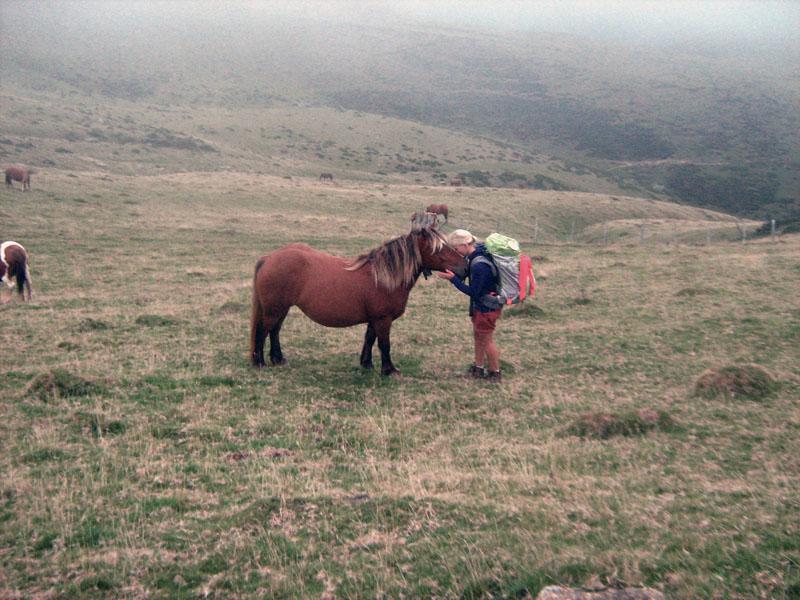 Jana mazlící se s koněm